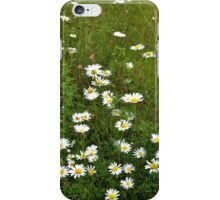 Daisy Wild iPhone Case/Skin