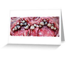brush yer teeth Greeting Card