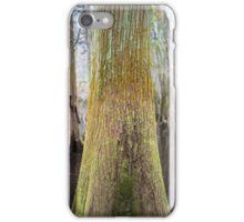 Colors of the Swamp Tupelo – Congaree National Park, South Carolina iPhone Case/Skin