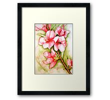 Peach Flower Watercolor iPhone Case Framed Print