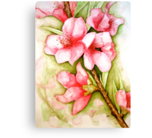 Peach Flower Watercolor iPhone Case Canvas Print