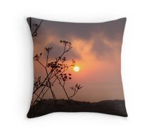 Sunset behind the fennel plant Throw Pillow