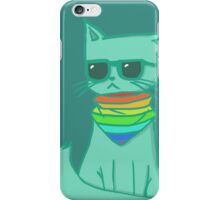 Scarf cat (Turquoise) iPhone Case/Skin