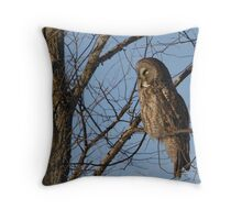 Gray On A Sunny Day Throw Pillow