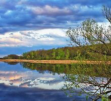 Natural Mirror by EBArt