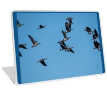 Greater White-Fronted Geese In Flight Laptop Skin
