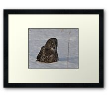 CLAUS Framed Print