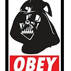 OBEY Vader by gnarlynicole