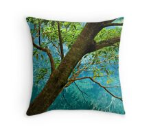 Refections 3 Throw Pillow