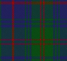 00400 Barnaby Brown Tartan by Detnecs2013