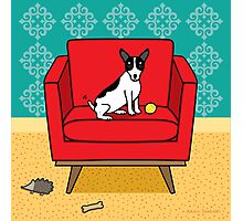 Rat Terrier Square Photographic Print