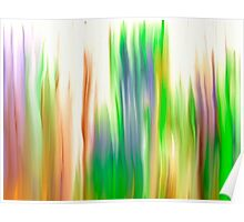 The Beautiful Veil Oil Painting Abstract Poster