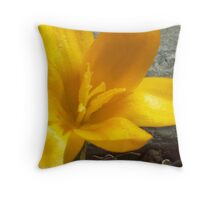 SPRING has Sprung...  Throw Pillow