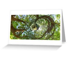 In Treetops Greeting Card