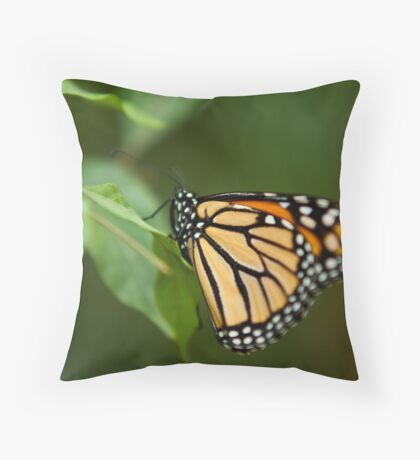 Beautiful, but short life Throw Pillow