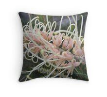 A spaghetti flower,   no a grevillia bush Throw Pillow