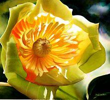 Poplar Tulip Floral Watercolor  by Paul Jackson