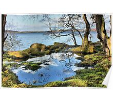 Peat Pond Poster