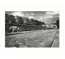 Quai des Orfevres Black and White Dog Art Print