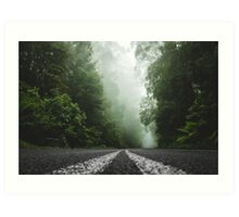 Misty Otway Forest Art Print