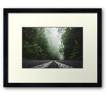 Misty Otway Forest Framed Print