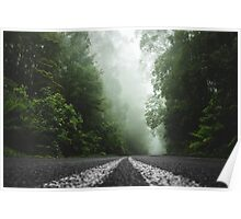Misty Otway Forest Poster