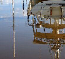 Marina Reflection - Launceston, Tasmania by Ruth Durose