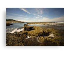 Waterfall Seascapes Canvas Print