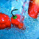 Pepper  by Tenee Attoh
