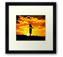 Monkey Mia crow Framed Print