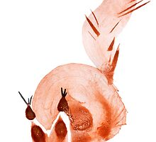watercolor squirrel. Watercolor hand drawn brush by OlgaBerlet