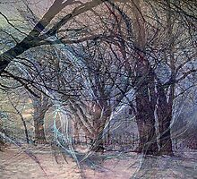 Ghosts Of Winter Flee Spring by Charles Oliver
