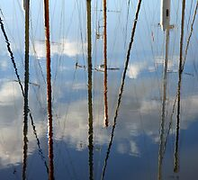 Masts - Seaport Marina, Launceston, Tasmania by Ruth Durose