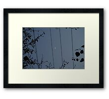 Moon on a wire Framed Print