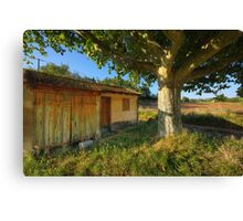 Cabanon in Provence Canvas Print