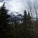 Cascade Mountain by Martha Medford