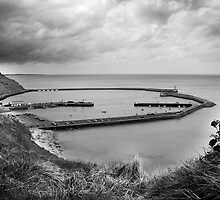 Port en Bessin, from the hill by Arnaud Lebret