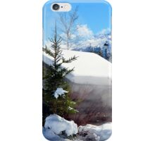 Winter in Alps iPhone Case/Skin