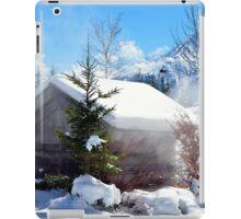Winter in Alps iPad Case/Skin