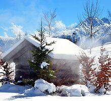 Winter in Alps by Elzbieta Fazel