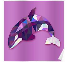 Orca Animals Gift Poster