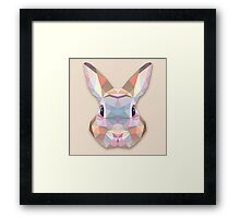 Rabbit Hare Animals Gift Framed Print