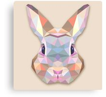 Rabbit Hare Animals Gift Canvas Print
