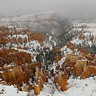 Winter in Bryce, Utah by Tamas Bakos