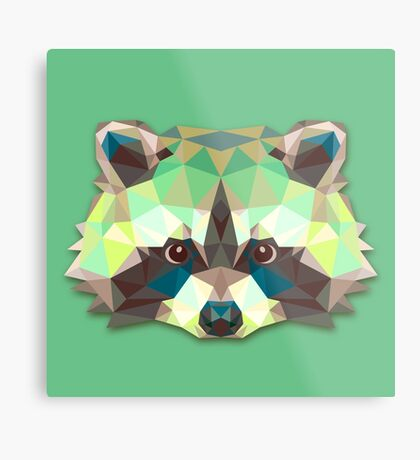 Raccoon Animals Gift Metal Print