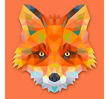Fox Animals Gift Photographic Print