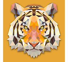 Tiger Animals Gift Photographic Print