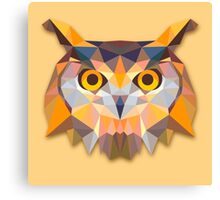 Owl Animals Gift Canvas Print