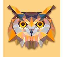 Owl Animals Gift Photographic Print