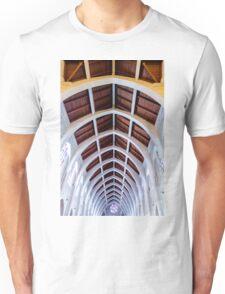 Descending Arches Unisex T-Shirt